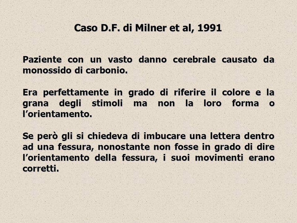 Caso D.F. di Milner et al, 1991 Paziente con un vasto danno cerebrale causato da monossido di carbonio.