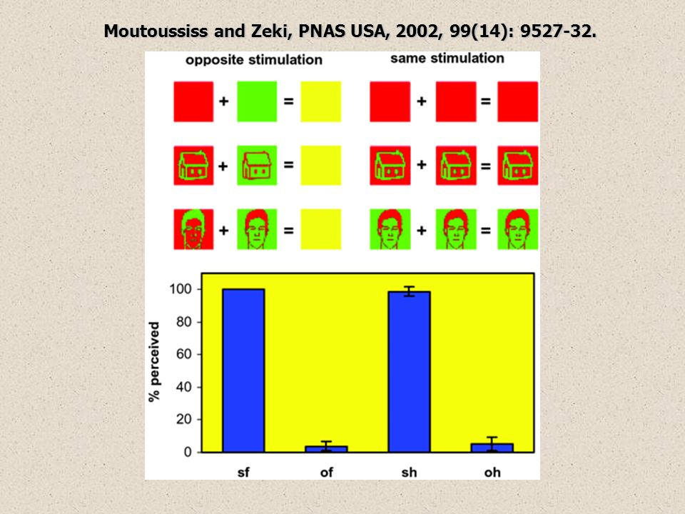 Moutoussiss and Zeki, PNAS USA, 2002, 99(14): 9527-32.
