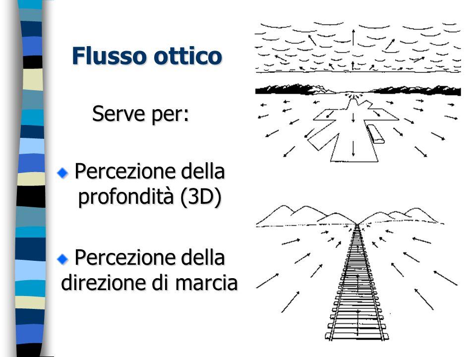Flusso ottico Serve per: Percezione della profondità (3D)