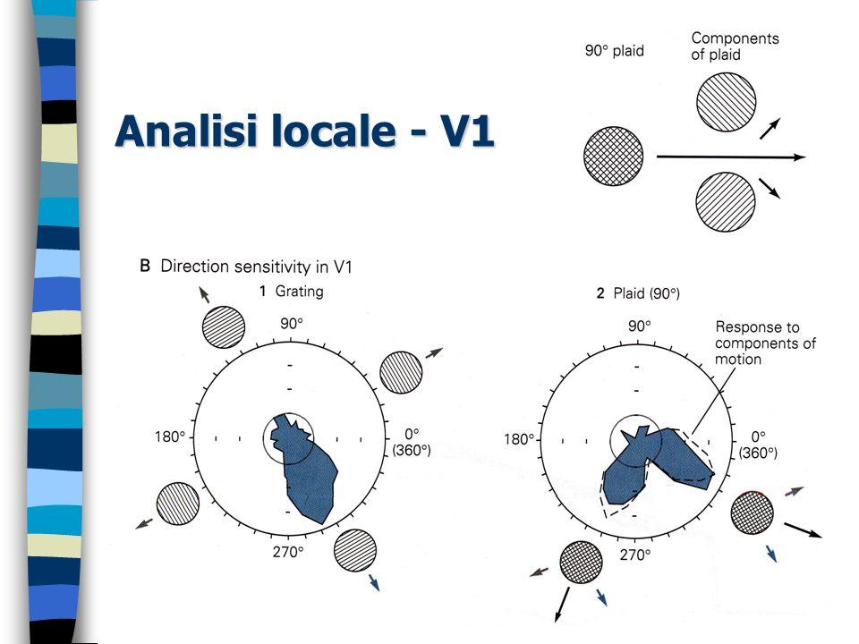 Analisi locale - V1