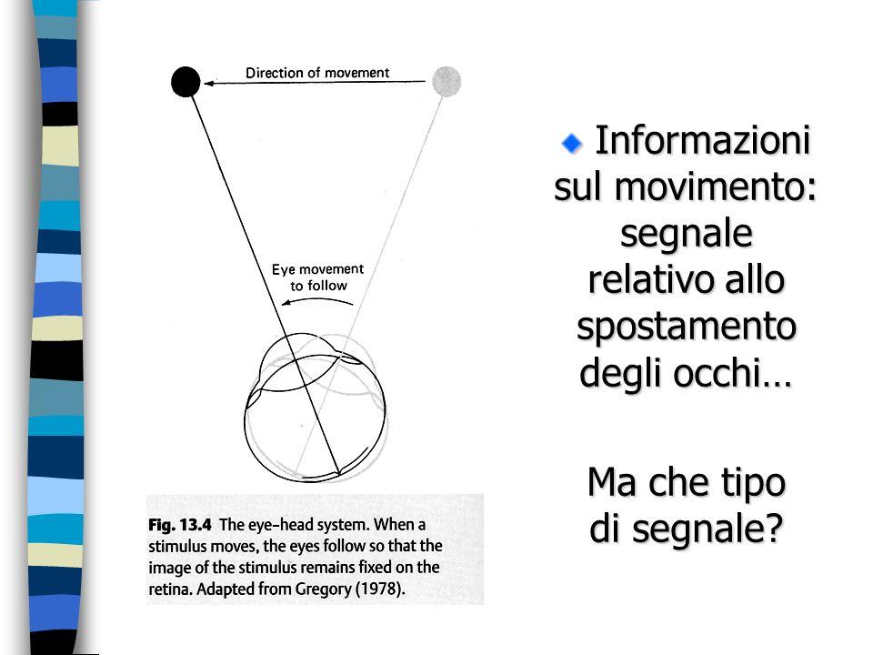 Informazioni sul movimento: segnale relativo allo spostamento degli occhi…
