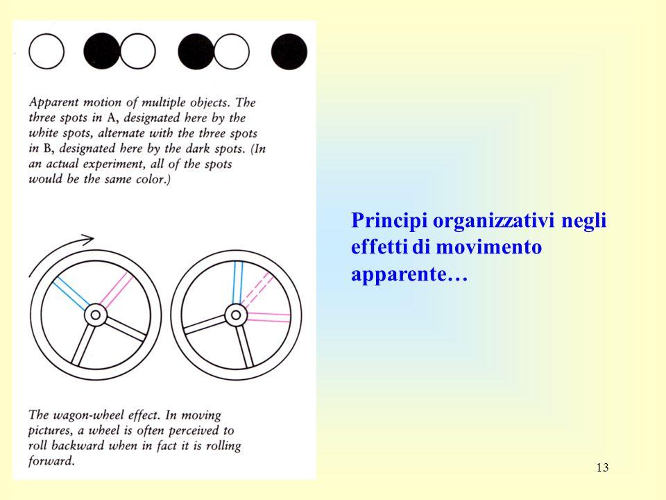 Principi organizzativi negli effetti di movimento apparente…