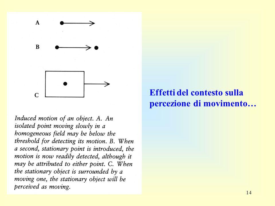 Effetti del contesto sulla percezione di movimento…