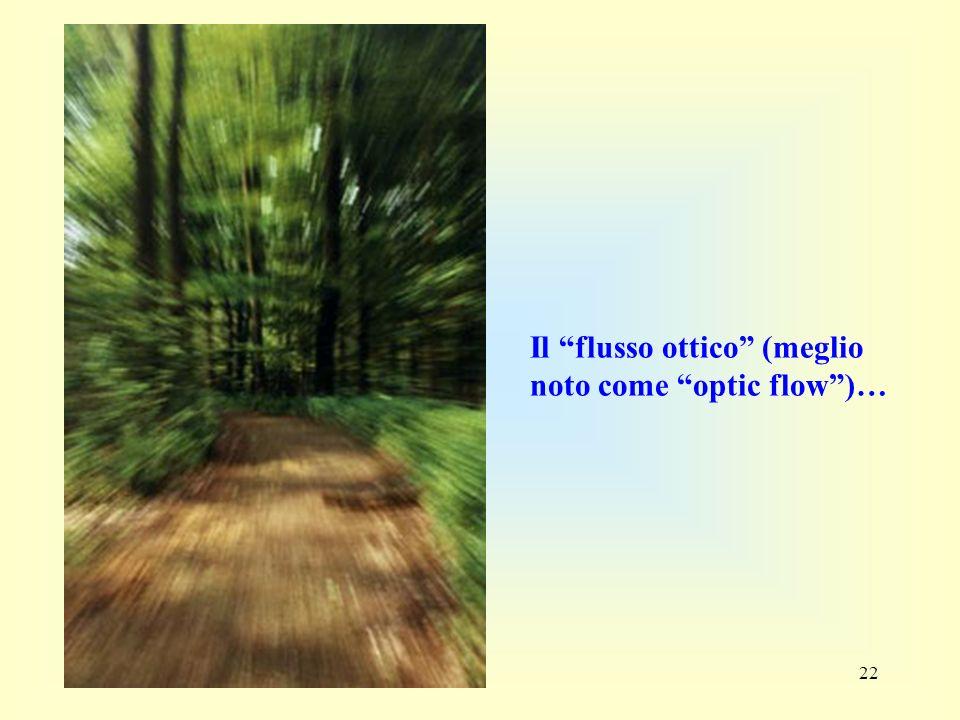 Il flusso ottico (meglio noto come optic flow )…