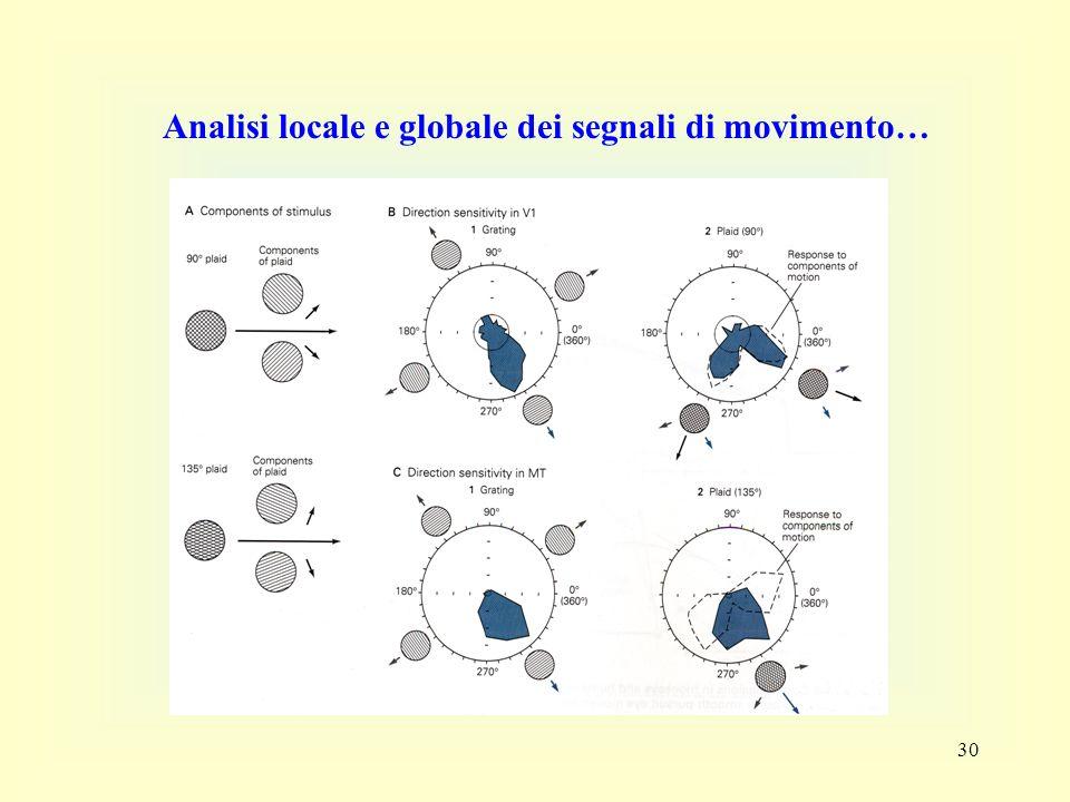 Analisi locale e globale dei segnali di movimento…