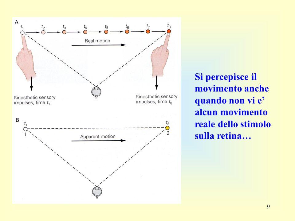 Si percepisce il movimento anche quando non vi e' alcun movimento reale dello stimolo sulla retina…