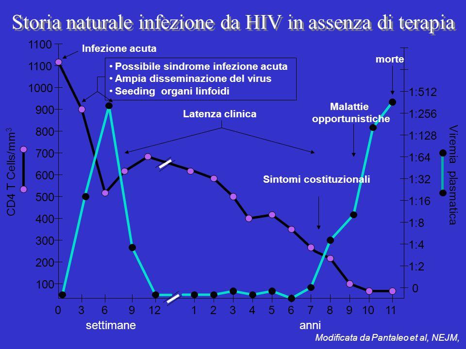 Storia naturale infezione da HIV in assenza di terapia