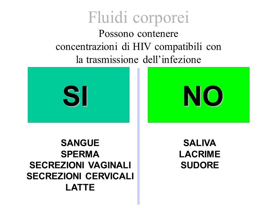 Fluidi corporei Possono contenere concentrazioni di HIV compatibili con la trasmissione dell'infezione