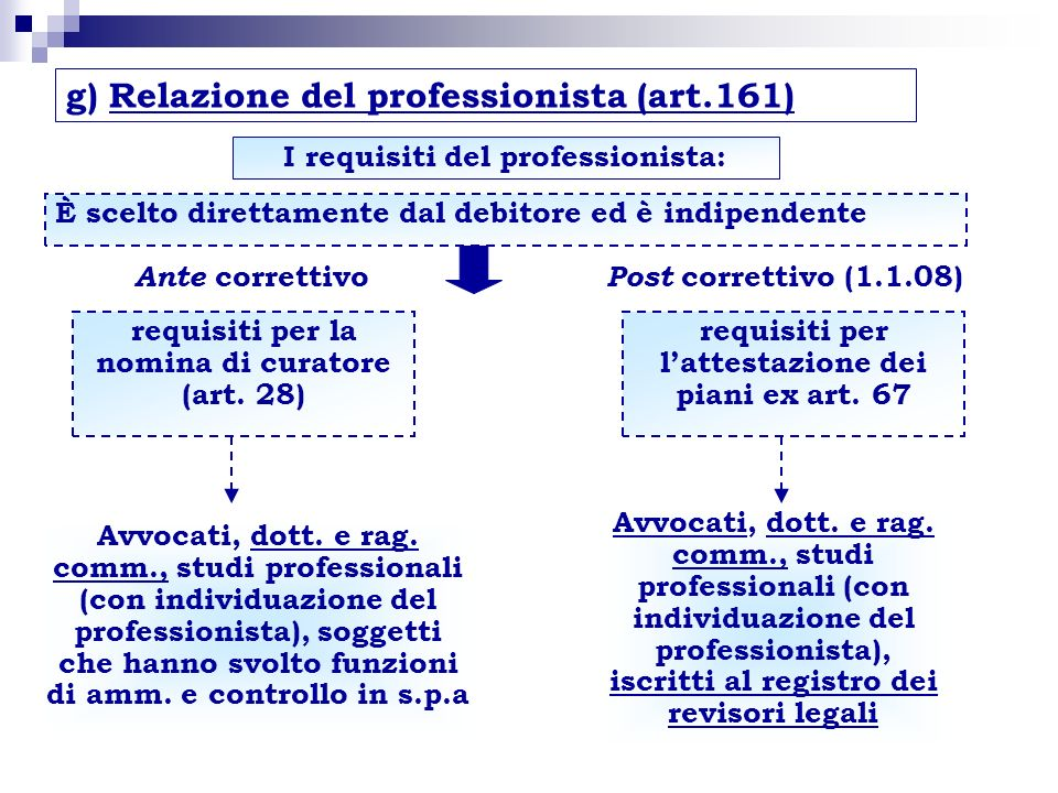 g) Relazione del professionista (art.161)