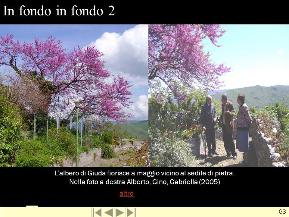 In fondo in fondo 2 L'albero di Giuda fiorisce a maggio vicino al sedile di pietra. Nella foto a destra Alberto, Gino, Gabriella (2005)