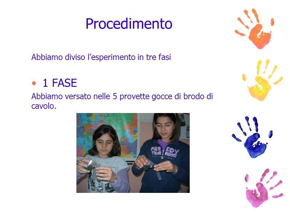 Procedimento 1 FASE Abbiamo diviso l'esperimento in tre fasi