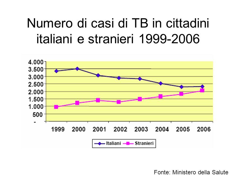Numero di casi di TB in cittadini italiani e stranieri 1999-2006