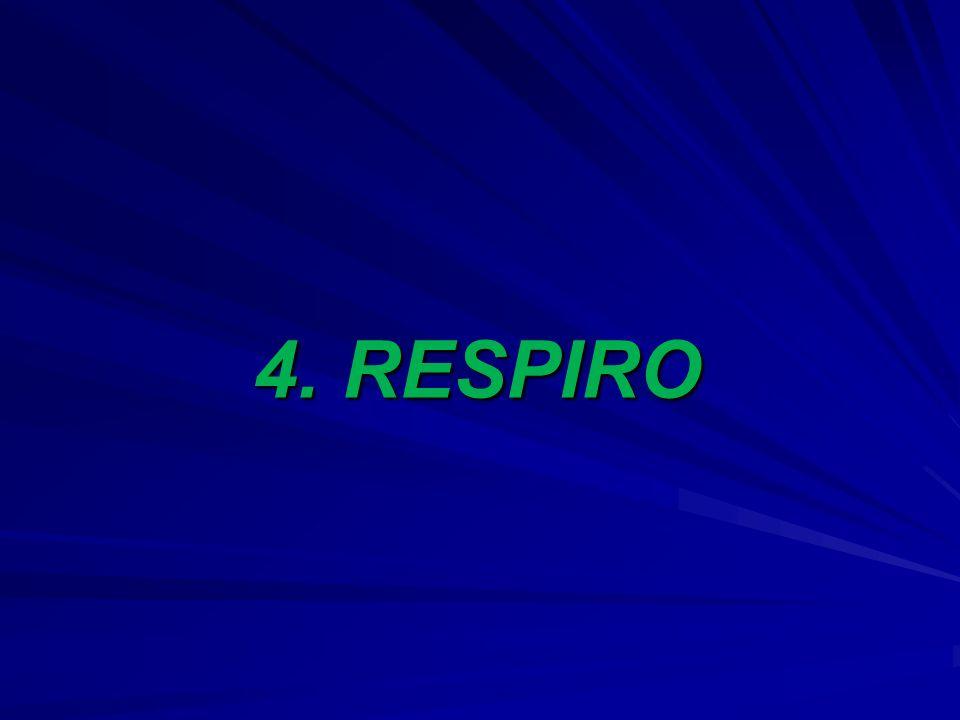 4. RESPIRO