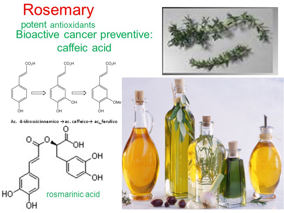 Rosemary potent antioxidants