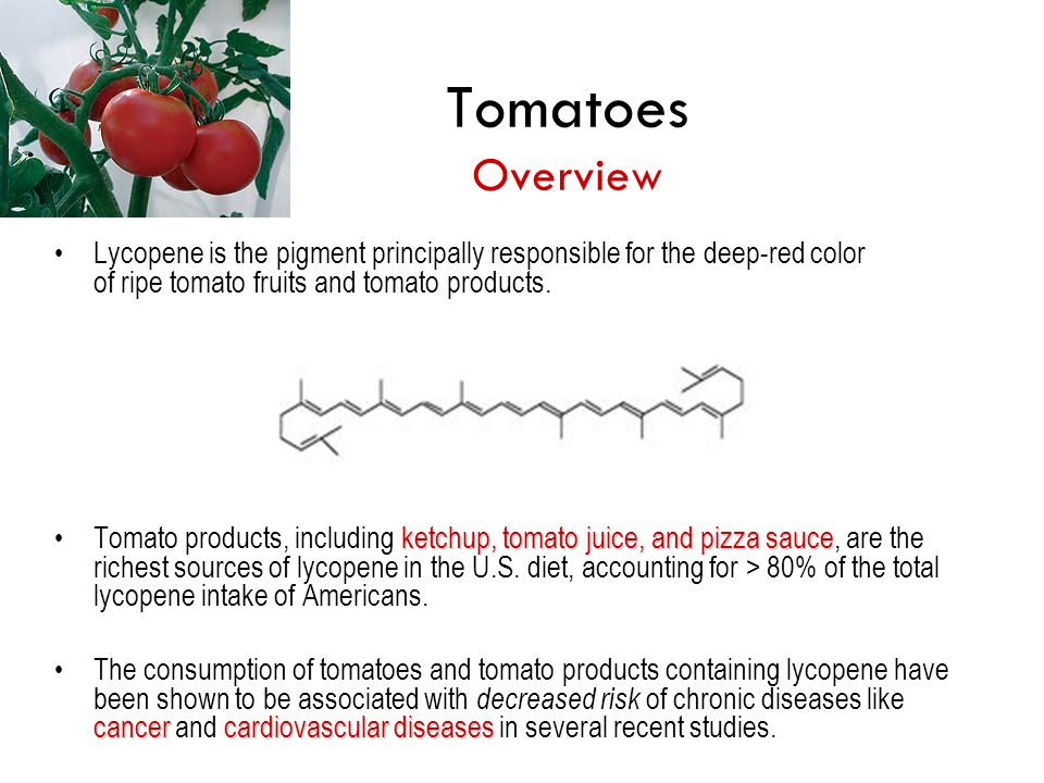 Tomatoes Overview