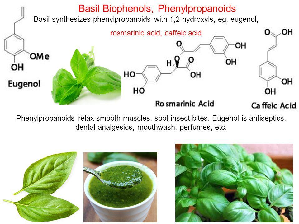 Basil Biophenols, Phenylpropanoids