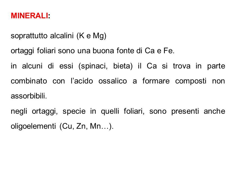 MINERALI: soprattutto alcalini (K e Mg) ortaggi foliari sono una buona fonte di Ca e Fe.