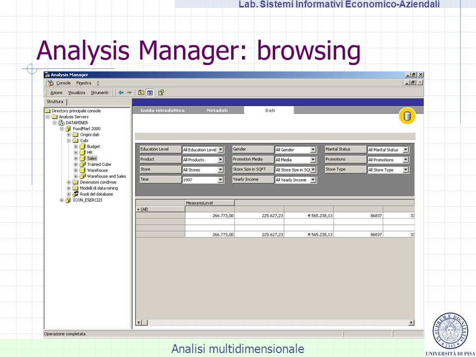 Analysis Manager: browsing
