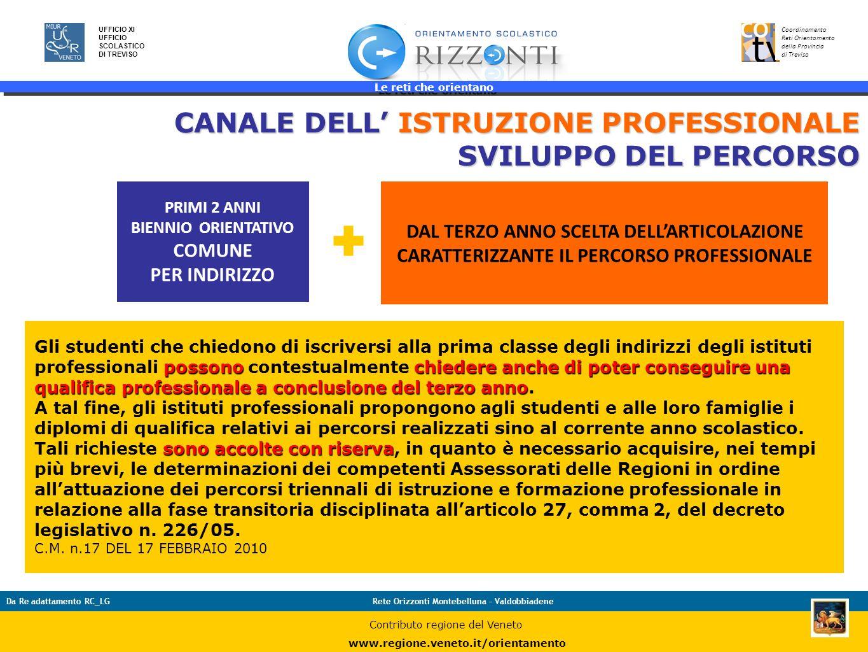 CANALE DELL' ISTRUZIONE PROFESSIONALE SVILUPPO DEL PERCORSO