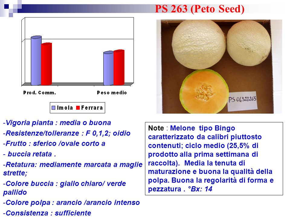 PS 263 (Peto Seed) Vigoria pianta : media o buona