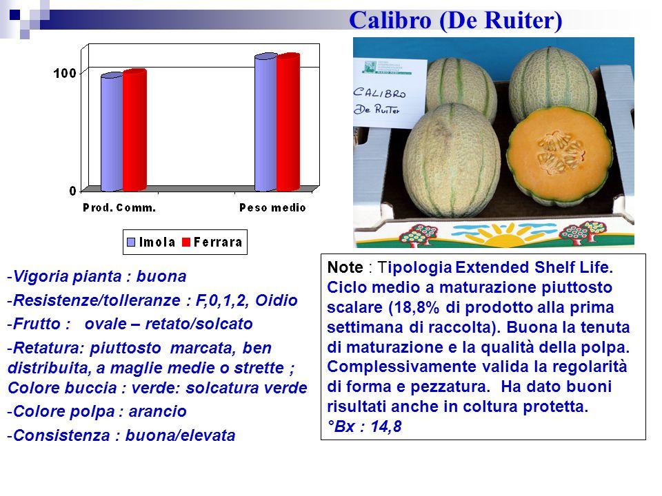 Calibro (De Ruiter)
