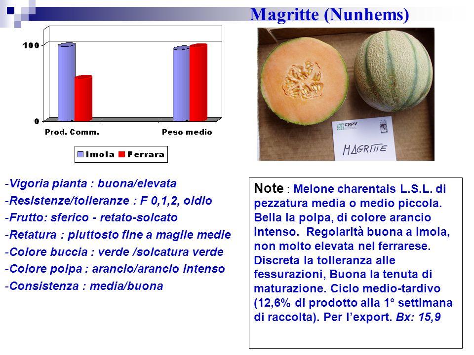 Magritte (Nunhems) Vigoria pianta : buona/elevata. Resistenze/tolleranze : F 0,1,2, oidio. Frutto: sferico - retato-solcato.