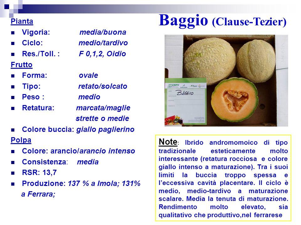 Baggio (Clause-Tezier)
