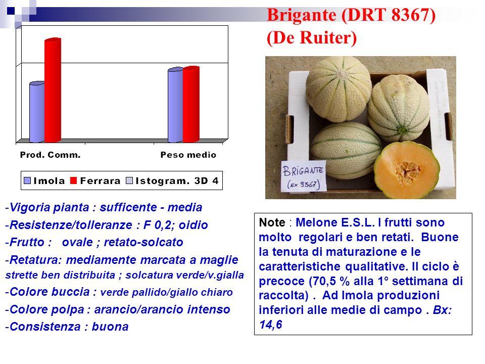 Brigante (DRT 8367) (De Ruiter)