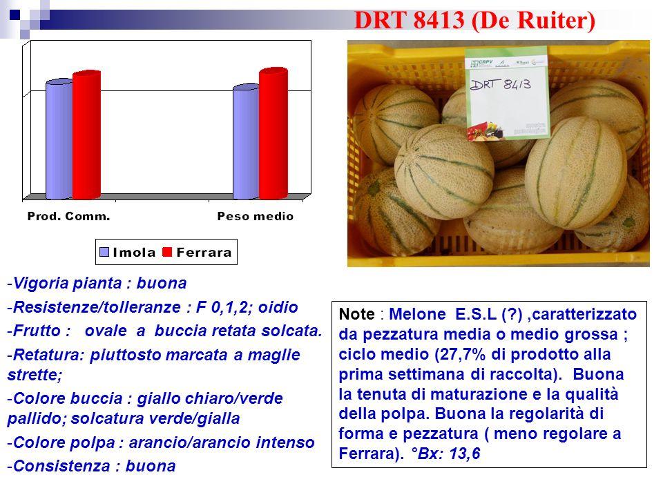DRT 8413 (De Ruiter) Vigoria pianta : buona
