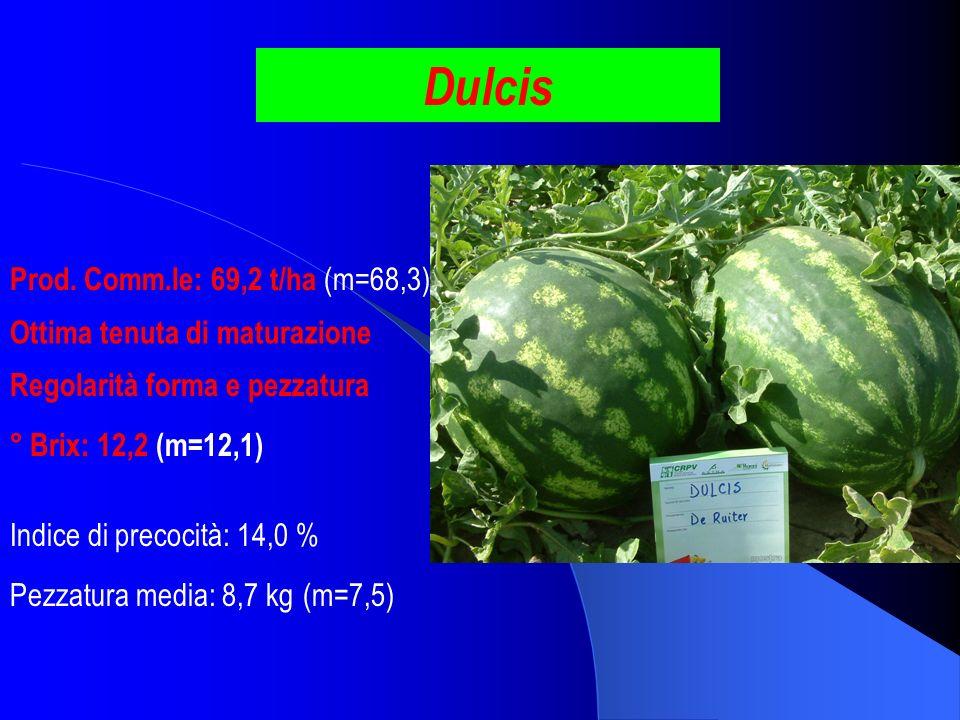 Dulcis Prod. Comm.le: 69,2 t/ha (m=68,3) Ottima tenuta di maturazione