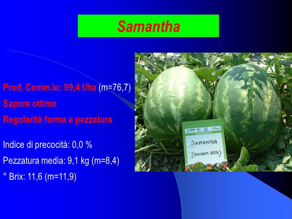 Samantha Prod. Comm.le: 99,4 t/ha (m=76,7) Sapore ottimo