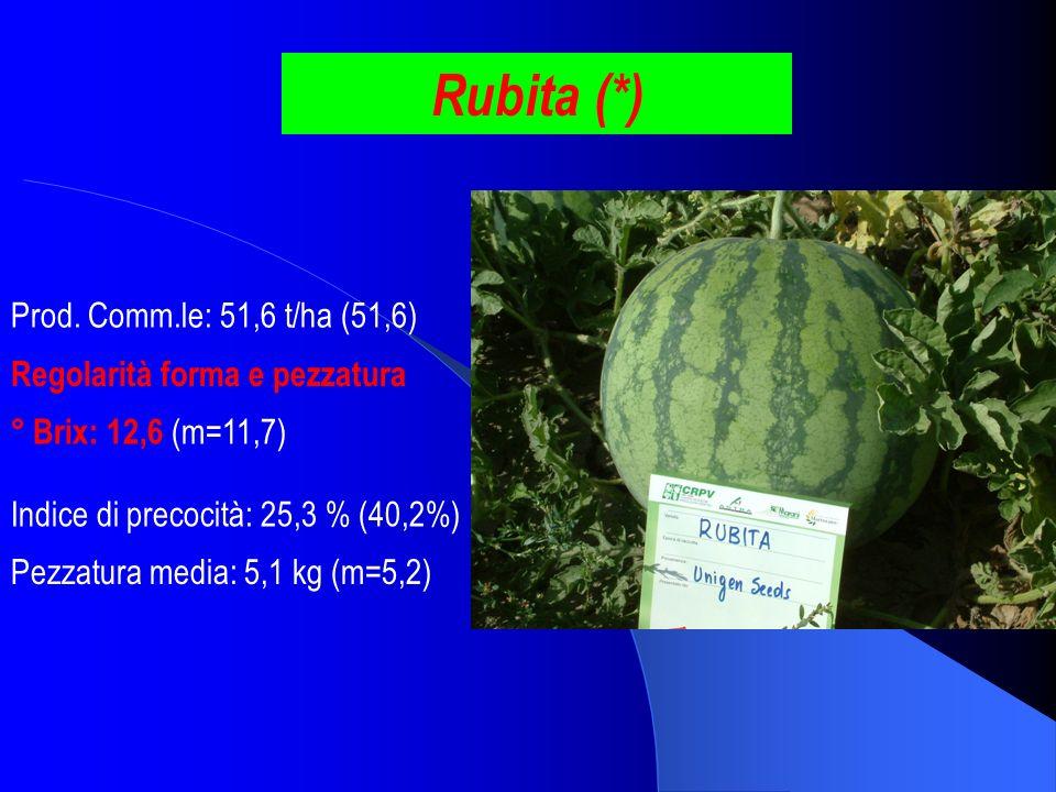 Rubita (*) Prod. Comm.le: 51,6 t/ha (51,6)