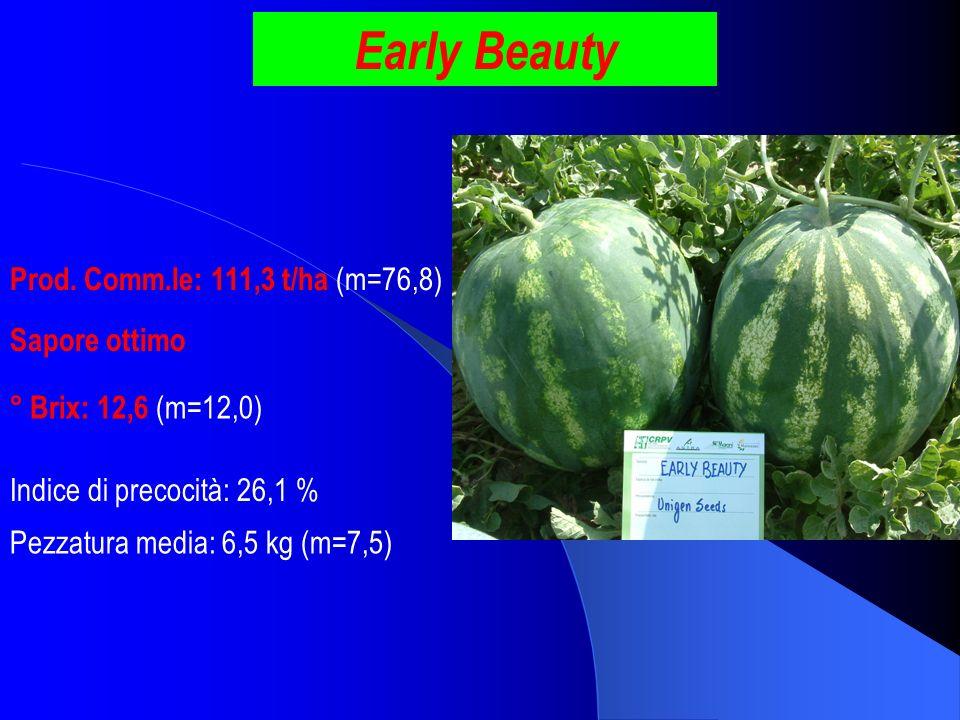 Early Beauty Prod. Comm.le: 111,3 t/ha (m=76,8) Sapore ottimo