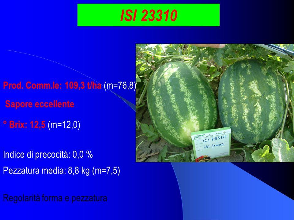 ISI 23310 Prod. Comm.le: 109,3 t/ha (m=76,8) Sapore eccellente