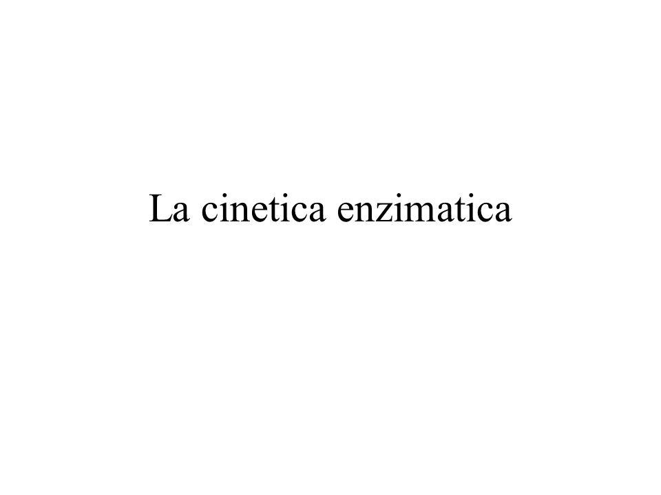 La cinetica enzimatica