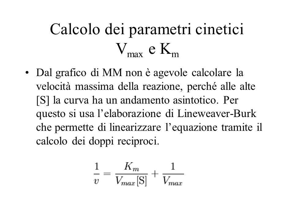 Calcolo dei parametri cinetici Vmax e Km