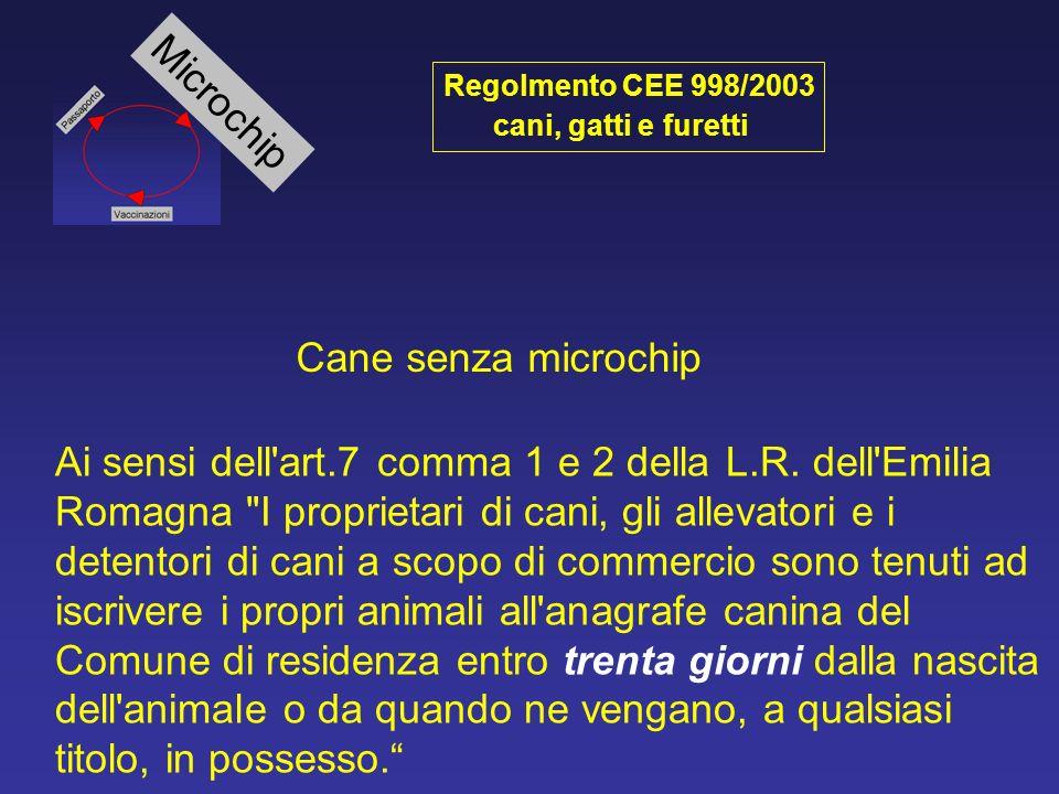 Microchip Cane senza microchip