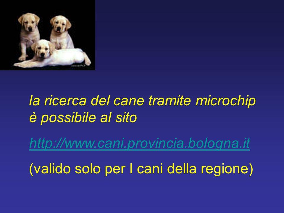 la ricerca del cane tramite microchip è possibile al sito