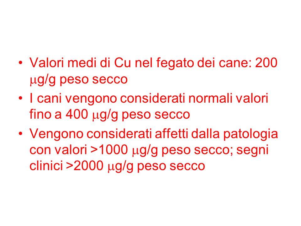 Valori medi di Cu nel fegato dei cane: 200 mg/g peso secco