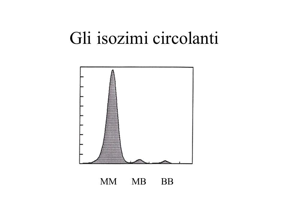 Gli isozimi circolanti