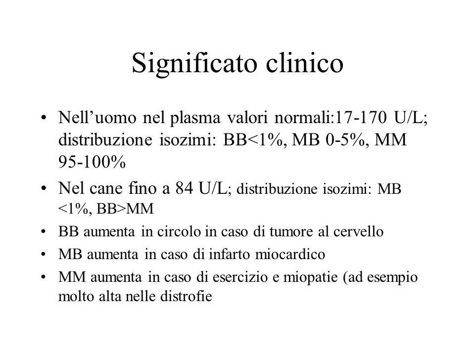 Significato clinico Nell'uomo nel plasma valori normali:17-170 U/L; distribuzione isozimi: BB<1%, MB 0-5%, MM 95-100%