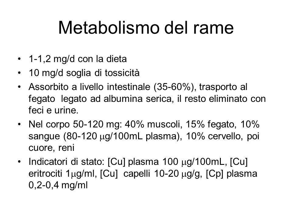 Metabolismo del rame 1-1,2 mg/d con la dieta
