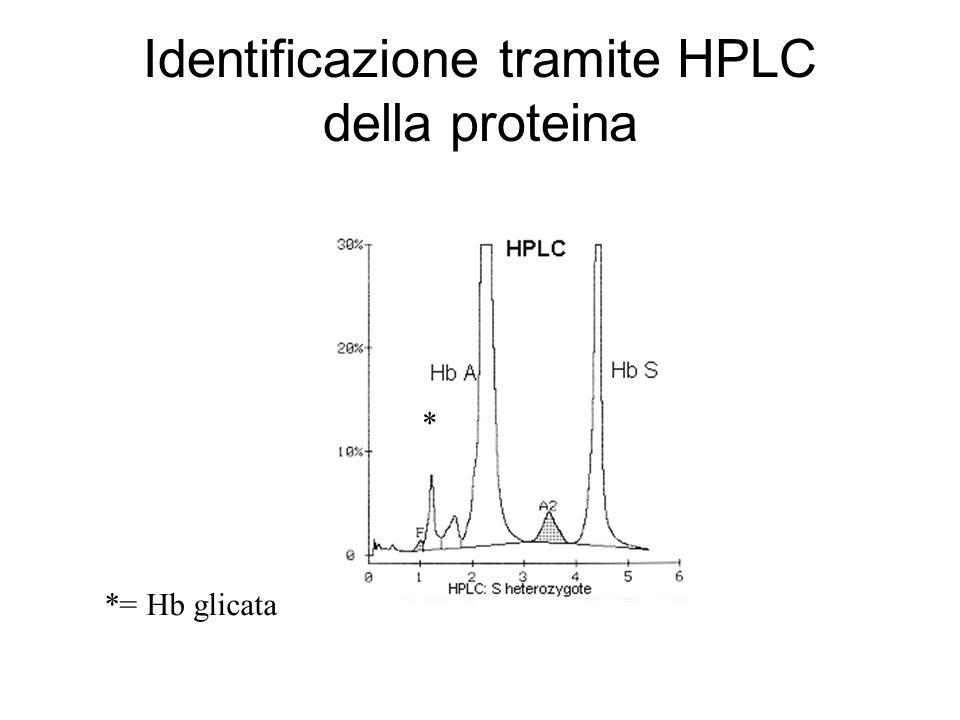 Identificazione tramite HPLC della proteina