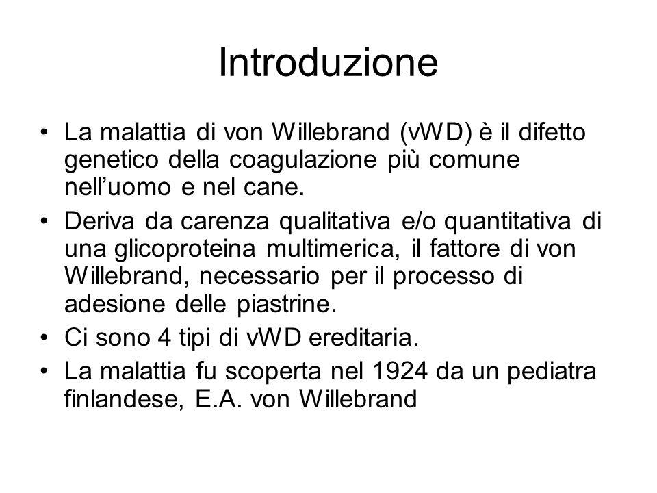 Introduzione La malattia di von Willebrand (vWD) è il difetto genetico della coagulazione più comune nell'uomo e nel cane.