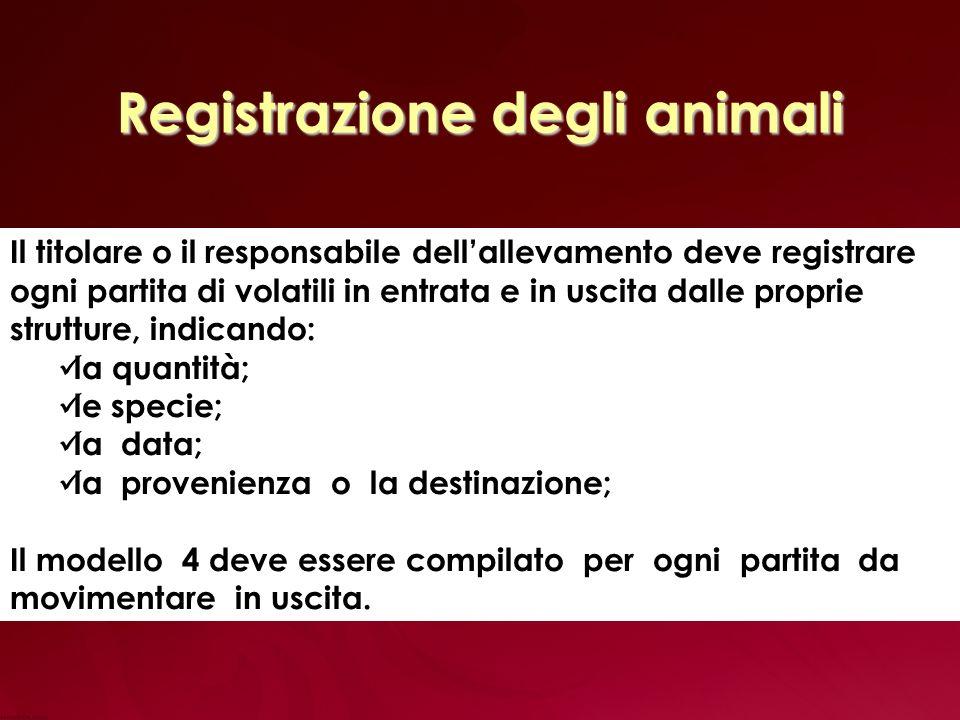 Registrazione degli animali