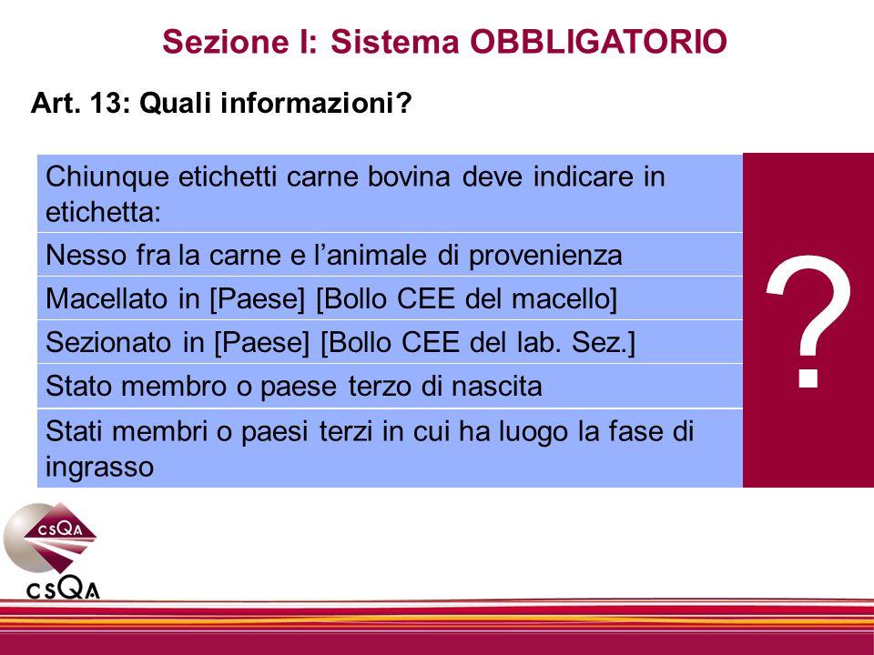 Sezione I: Sistema OBBLIGATORIO Art. 13: Quali informazioni