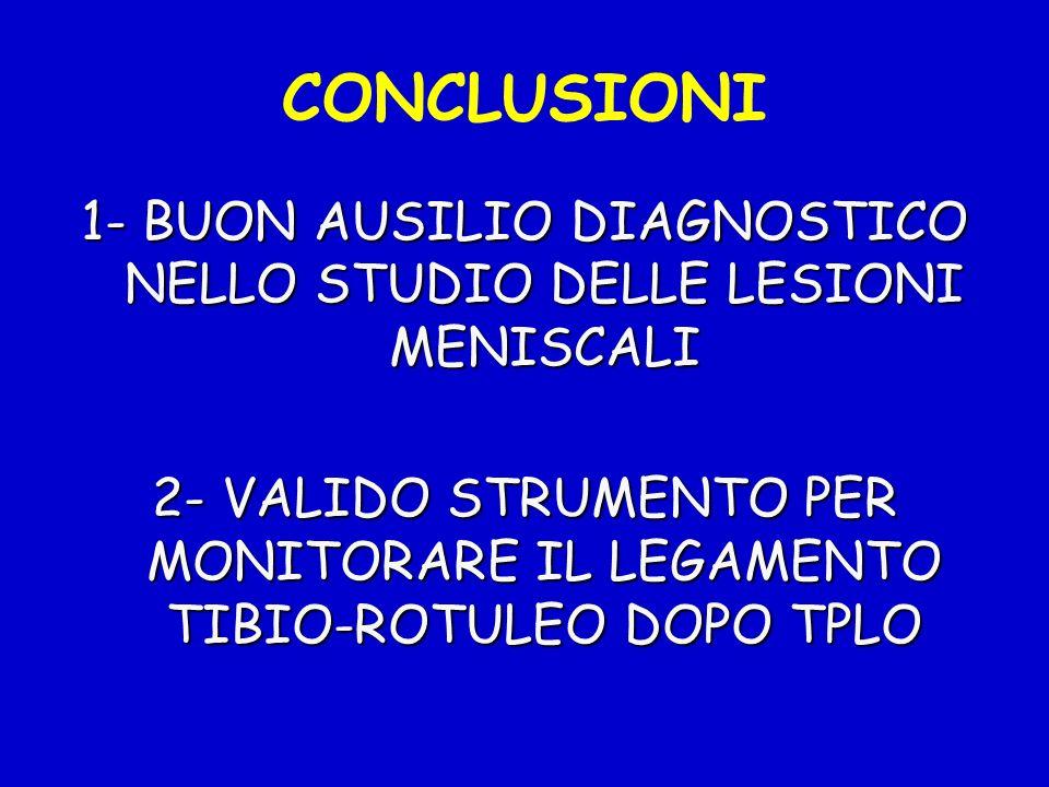 1- BUON AUSILIO DIAGNOSTICO NELLO STUDIO DELLE LESIONI MENISCALI