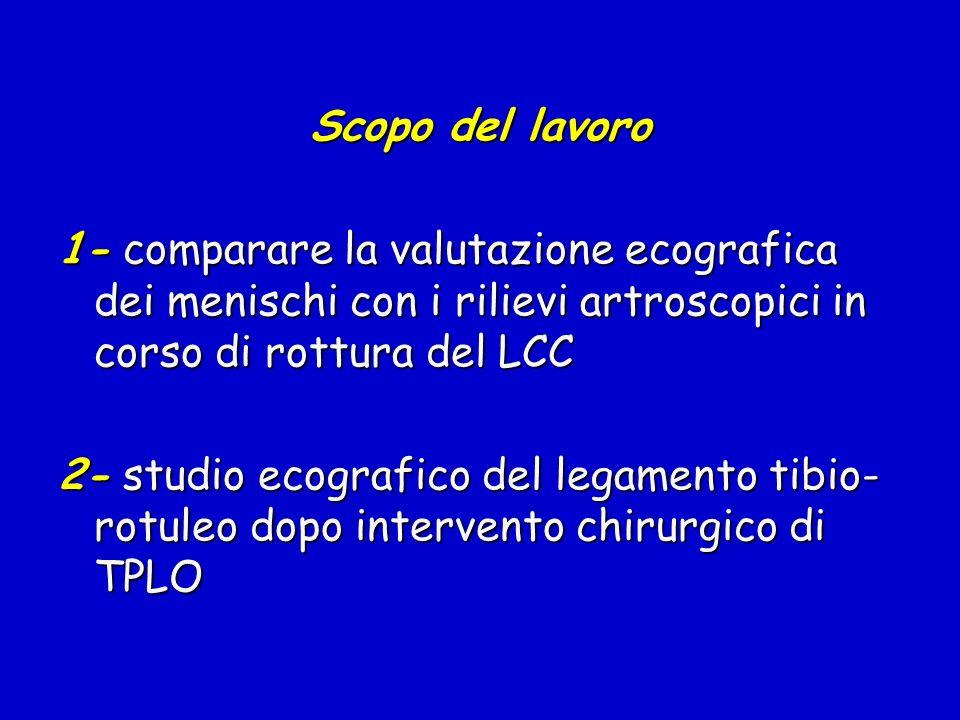 Scopo del lavoro 1- comparare la valutazione ecografica dei menischi con i rilievi artroscopici in corso di rottura del LCC.