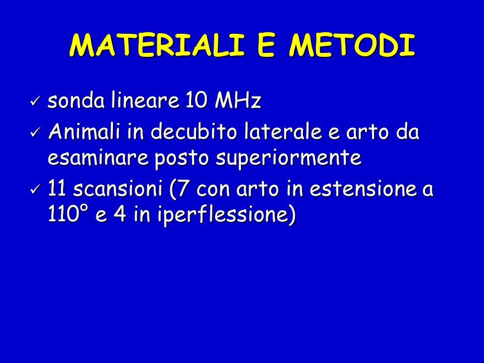 MATERIALI E METODI sonda lineare 10 MHz
