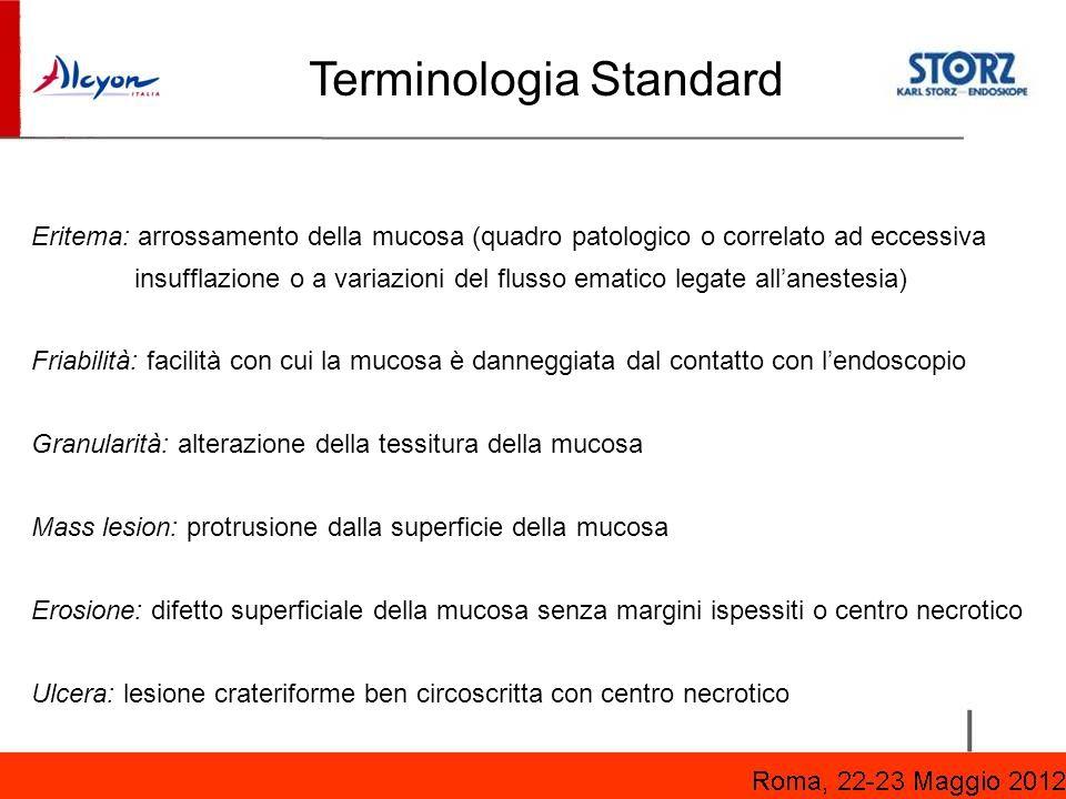 Terminologia Standard
